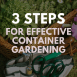 tips for effective container gardening - Pinterest pin