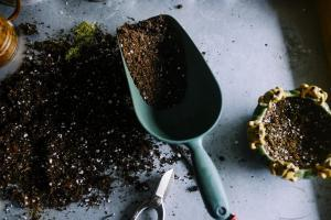 tips for effective container gardening - use potting soil instead of dirt or other soil